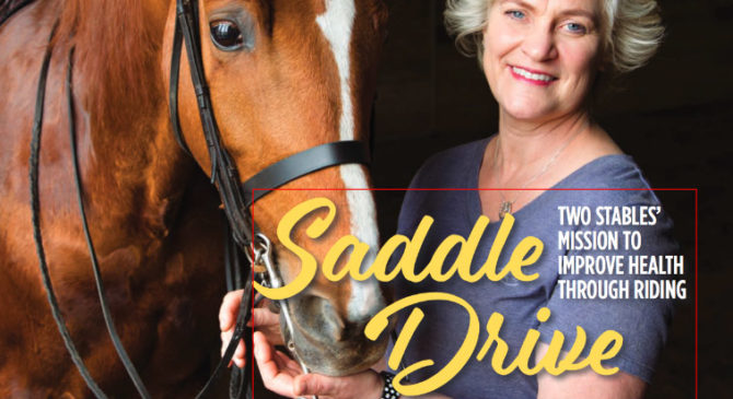 Saddle Drive